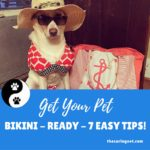 Get Your Pet Bikini-Ready–7 Easy Tips!