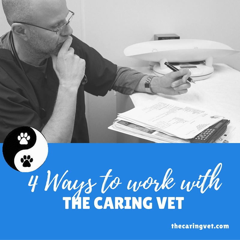 work with the caring vet