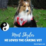 Skyler says The Caring Vet is Kind, Loving & Knowledgable