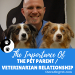 The Importance of the Pet Parent / Veterinarian Relationship