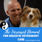 The Increasing Demand for Holistic Veterinary Care on Long Island