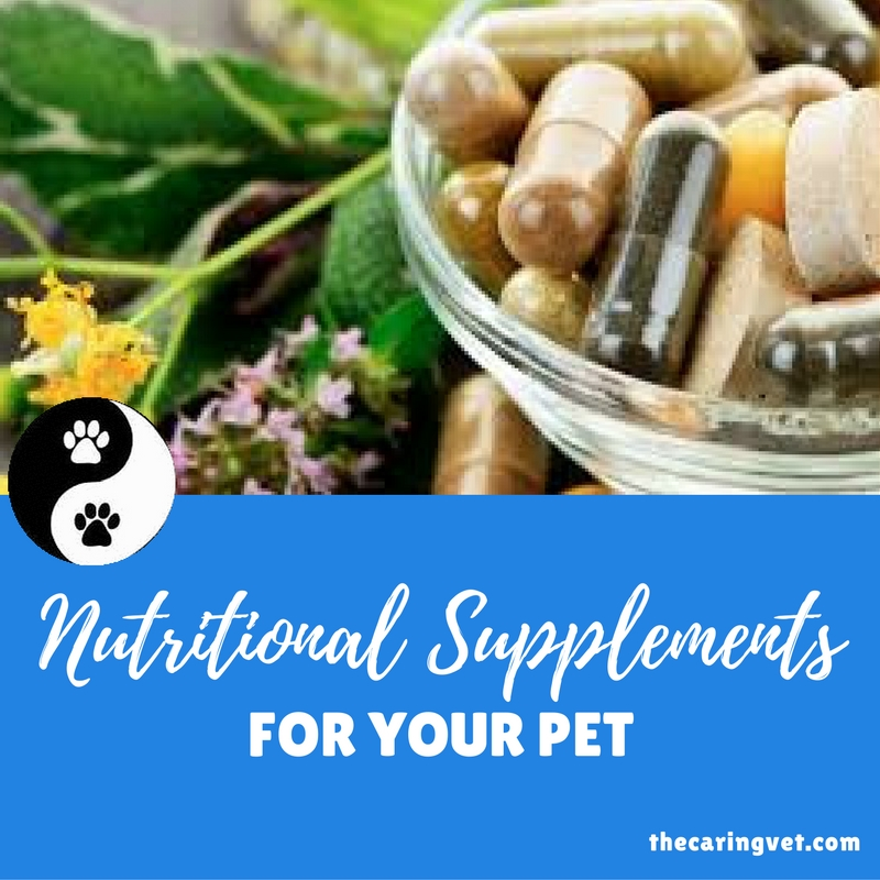 are nutritional supplements necessary for your pet