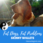 Fat Dogs = Fat Problems = Skinny Wallets