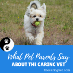 What Long Island Pet Parents Say About The Caring Vet