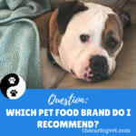 Which Pet Food Brand Do I Recommend?