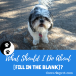 What Should I Do About {Fill In the Blank?}