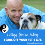 4 Ways You're Taking Years Off Your Pet's Life