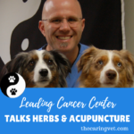 Leading Cancer Center Talks Herbs & Acupuncture for Cancer Treatment
