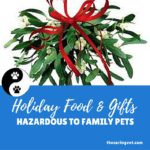 HOLIDAY FOODS AND GIFTS POSE HAZARDS FOR FAMILY PETS