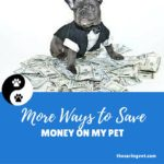 More Ways To Save Money On Your Pet.