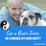 Can A Brain Tumor Be Caused by a Bad Diet