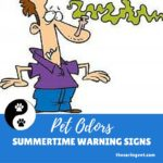 PET ODORS-SUMMERTIME WARNING SIGNS