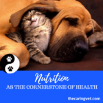 Making Sense of Dog Food Labels & Nutrition as the Cornerstone for Good Health