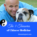 The Three Treasures of Chinese Medicine