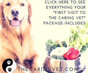 The first visit to the caring vet package includes_